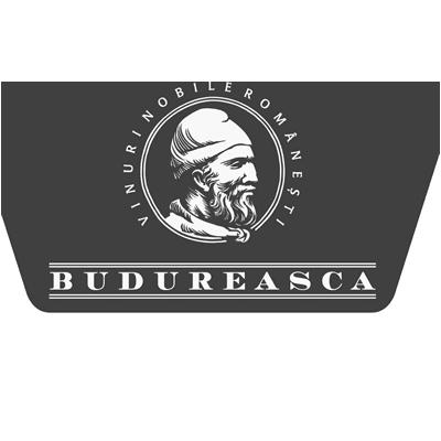 Budureasca.ro